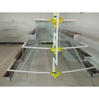 Best A type 3 tiers 96 birds automatic chicken cage wholesale