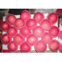 Buy cheap 2016 New Crop and Harvest Chinese Fresh Red or Green Color Red Star Variety from wholesalers