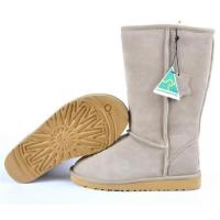 Buy cheap Ugg Classic Tall 5815 from wholesalers