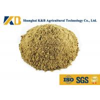 Best Full Fat Organic Fish Meal Fertilizer / Food Grade Fish Meal Enhance Poultry Nutrition wholesale