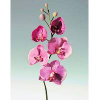 Best Artificial Orchid Flowers wholesale