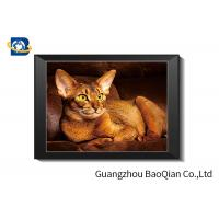 Best Cute Cat Lenticular Printing Picture With Frame For Decoration , 40 x 40 cm PET 0.65 mm Picture In Stock wholesale