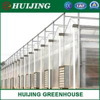 China Agriculture/Commerical Multi Span Polycarbonate Sheet/PC Sheet Greenhouse Steel Frame for Vegetables/Garden/Tomato on sale