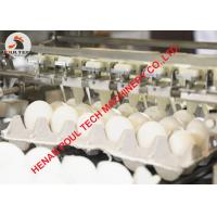 China 5000 eggs/Hour Egg Production - Egg Grading Machine & Egg Sorting Machine in Poultry Chicken Farm on sale