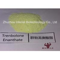 Best 99.48% Purity Tren Anabolic Steroid Trenbolone Enanthate/Parabolan for Muscle Gain Fitness wholesale