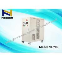 Best Air Cooled Ozone Generator Water Purification For Cleaning Ozone cleanr Machine 30g wholesale