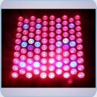 Best Indoor hydroponic 80 X 3W led plant growing lights / LED Plant Lamp with fans 1m / 2780 wholesale