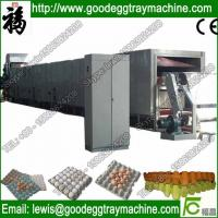 Best Paper Pulp Moulding Machine Made in china(FC-ZMG3-24) wholesale