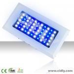 Best Dimmable 120W (55*3W) LED Aquarium Lights wholesale