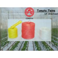 Best 1mm 1.5mm Colorful Polypropylene Twine For Tomato Tying / Poly Twine Rope wholesale