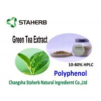 Best Nature Antioxidant Food Supplements Organic Green Tea Extract 20 - 98% Purity wholesale