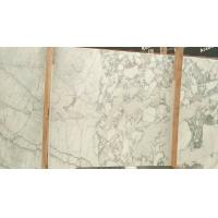 Best Arabescato Calacatta Marble Kitchen Countertops Customized Shape wholesale