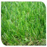 China High Density 7mm 8mm 10mm Playground Turf Mat Landscaping Artifical Grass Carpet on sale
