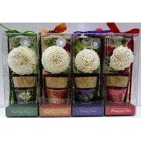 Best With Highest Quality , Cexquisite Design, Various Fragrance 50ml Reed Diffuser Set wholesale