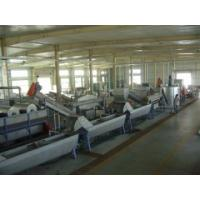 China pet flakes recycling line on sale