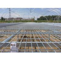 Best Greenhouse Seedbed Welded Mesh Fence Corrosion Resistance 30*130mm Mesh Hole wholesale