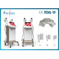 China 2 handles champagne cryolipolysis vacuum machine love handles removal freeze liposuction machine for body slimming on sale