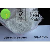 China Medical Testosterone Acetate Bodybuilding Steroid Raw Testosterone Powder for Muscle Growth wholesale