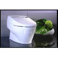 China self-clean bidet toilet luxury toilet and bidet without water tank automatic self-clean toilet on sale