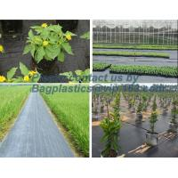 Best Water management weeb control pavement preservation courtyard beautify anti insect anti mold seedbed protection vegetati wholesale