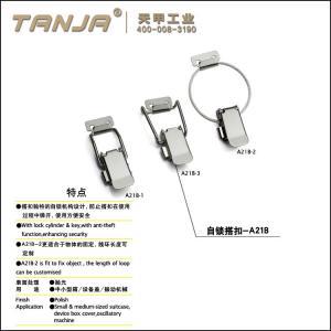 China TANJA A21B locking load 400N stainless steel316 light duty metal box toggle latch on sale