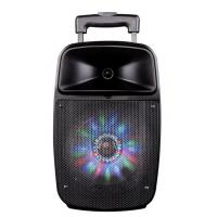Best 12 Inch Bluetooth Function Rechargeable Portable Trolley Speakers With Led Lights wholesale