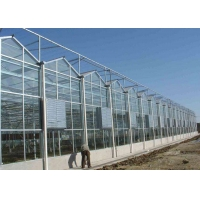 Best Recycling Anti Snow Planting Multi Span Glass Greenhouse wholesale