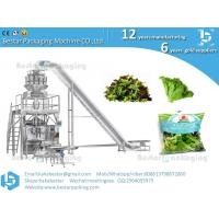 Best Lettuce packaging machine  cabbage packaging machine wholesale