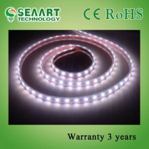 Best Red 60PCS 5050 SMD Flexible LED Strip Light For Sign Lighting wholesale