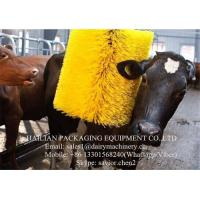 China Electric Motor Dairy Cow Scratching Brush For Animal Massagger , Cleaning on sale