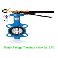 China Industrial Hand Lever Wafer Butterfly Valves With Cast Iron Body , Gear Operator on sale