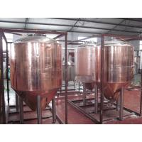 Best Professional Copper Mirror Small Beer Brewing Systems , Nano Brewery Equipment wholesale