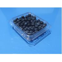 Best Disposable plastic fruit  packaging box with holes blueberry 125 grams packaging container PET plastic blueberry punnets wholesale