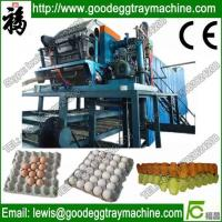 Best Paper Pulp Moulding Machine Made in china wholesale