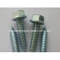 Best Hex Washer Head Self Drilling Screw/Self Tapping Screw (DIN7504) wholesale