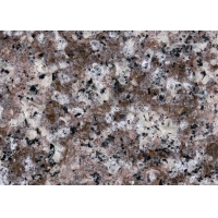 China Chinese G687 1800X 600mm Granite Countertop Slabs on sale