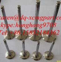 Best shangchai diesel engine spare parts intake valve and exhaust valve D04-110-33 wholesale