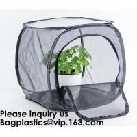 Best Agricultural Greenhouses for Tomato Planting,Pop-Up Tomato Plant Protector Serves as a Mini Greenhouse to Accelerate Gro wholesale