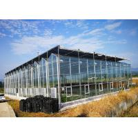 Best Multi Span Fully Automatic Greenhouse Large Size With Hydroponic System wholesale