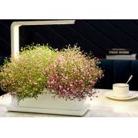 Best Decorative 12V 9W PP Home Hydroponic Growing Systems wholesale