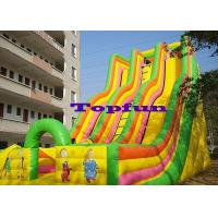 China Giant Inflatable Slide Playground Game Double Slides For Amusement Park wholesale