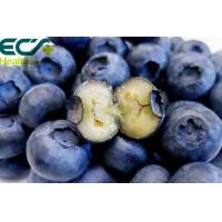 Best Blueberry powder; Oraganic Food Ingredients; Beauty effect, Freeze- Dried; eyes care; prevent cancer; antioxidant wholesale