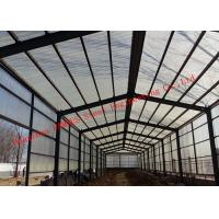Best Prefabricated Steel Structure Poultry Farming Shed For Chicken Farm Building And Cattle Farm Building wholesale