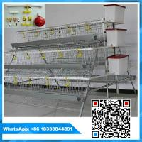Best 3 tiers 96 birds capacity poultry chicken layer cage wholesale