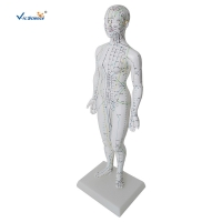 China Female Medical Acupuncture 48cm Human Body Massage Model on sale