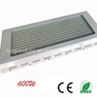 Best 600W Dimmable LED Grow Light (WL-BF600A8152) wholesale