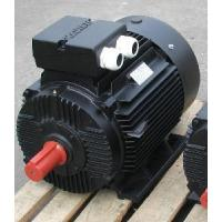 Best YD Series pole changing multi speed three phase asynchronous electric motor(BLACK) wholesale