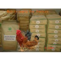Best Poultry Powdered Multivitamin Mix , Feed Grade Powder Multi Vitamin No. SV-M-P01 wholesale