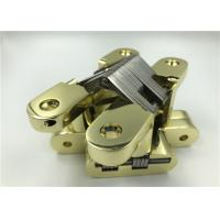 Cheap High Security Invisible Spring Hinges Zinc Alloy Body SS Center 25*118*18mm for sale