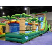 China Durable Odorless PVC Outdoor Inflatable Water Slide Park Kids Game Fire Resistance on sale